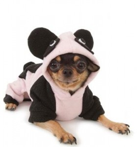 Happy Panda Costume PA-SD007 small image